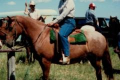 My Horse Suzie and I Again